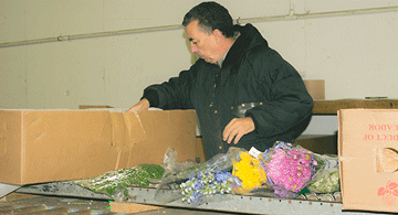 Packing-Flowers-Conveyor